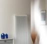 Вертикальный радиатор Arbonia 3180/06